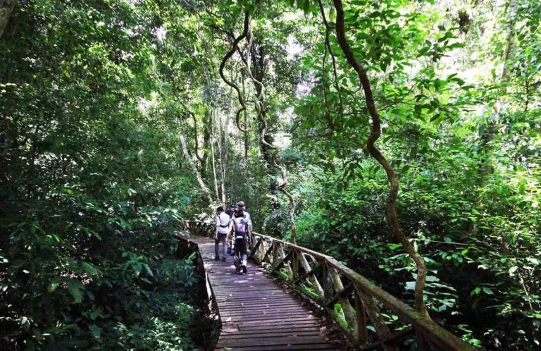 Niah National Park (photo: SL Wong)