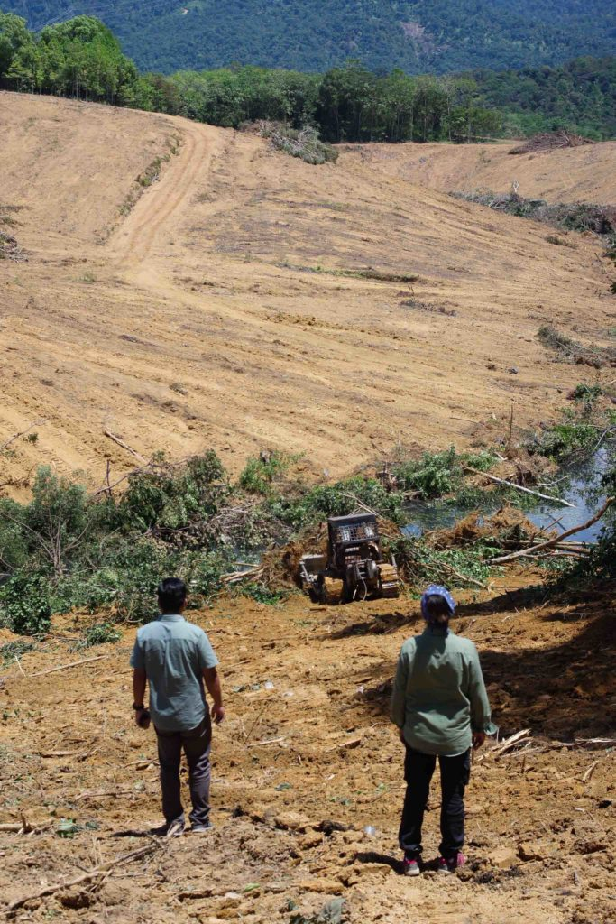 Looking at bulldozers clearing a section of Penawar Hutan