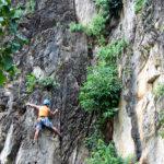 Karst ecosystem: Rock-climbing Batu Caves (Photo: SL Wong)