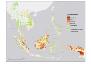 "A composite map of Southeast Asia showing Key Biodiversity Areas and areas of potential oil palm expansion. ""Suitability"" here refers only to ecological factors like climate and soil. Credit: Hennekam, Sarira, Koh)"
