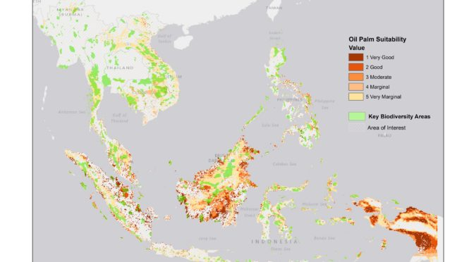Where Might Oil Palm Go Next?