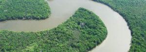 Mangroves, Kemaman, Terengganu (SK Chong/Sasyaz Holdings)