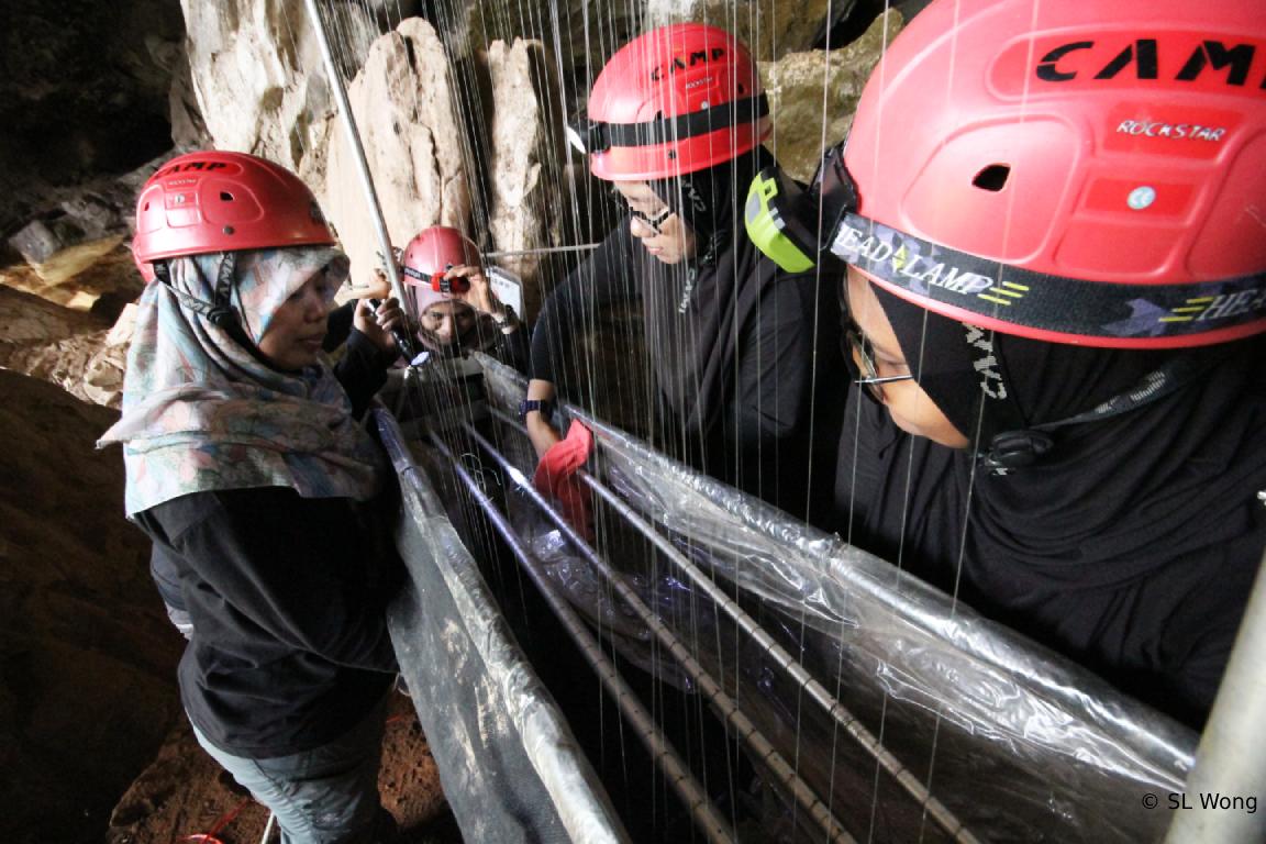 Bat Researchers in Batu Caves - Pic by SL Wong