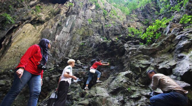 Discoveries Support Urgent Protection for Batu Caves