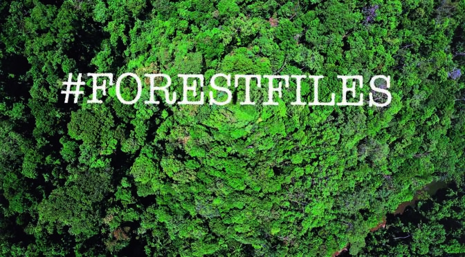Feedback: Forest Files