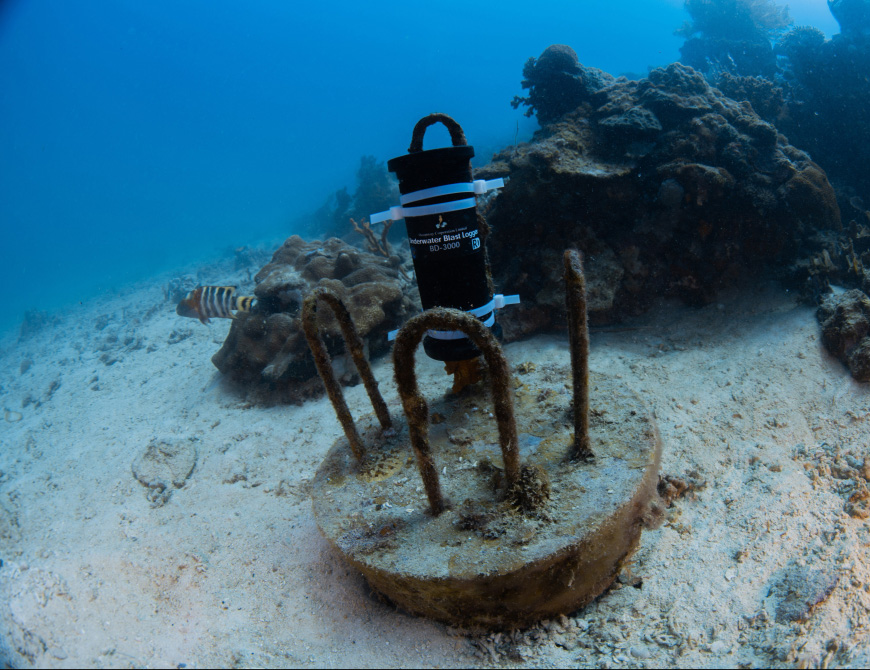 A blast detector installed by non-profit group The Reef Defenders. It can detect blasts caused by a beer-bottle-sized bomb up to 30km away. (Image: The Reef Defenders)
