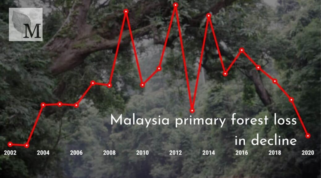 A line chart showing annual primary forest loss in Malaysia, 2002-2020. After peaks before 2015, losses have been dropping.