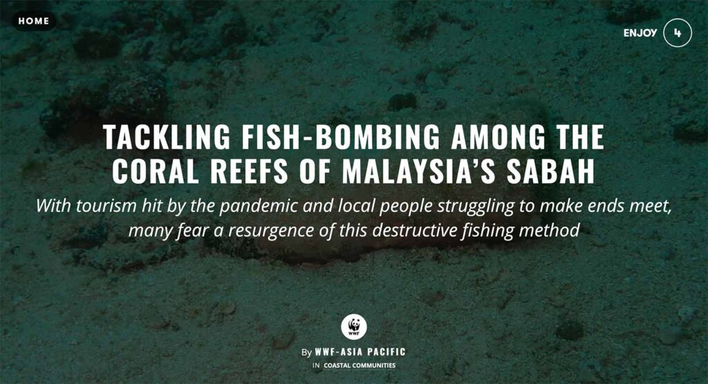 https://wwfasiapacific.exposure.co/tackling-fishbombing-among-the-coral-reefs-of-malaysias-sabah?source=share-wwfasiapacific
