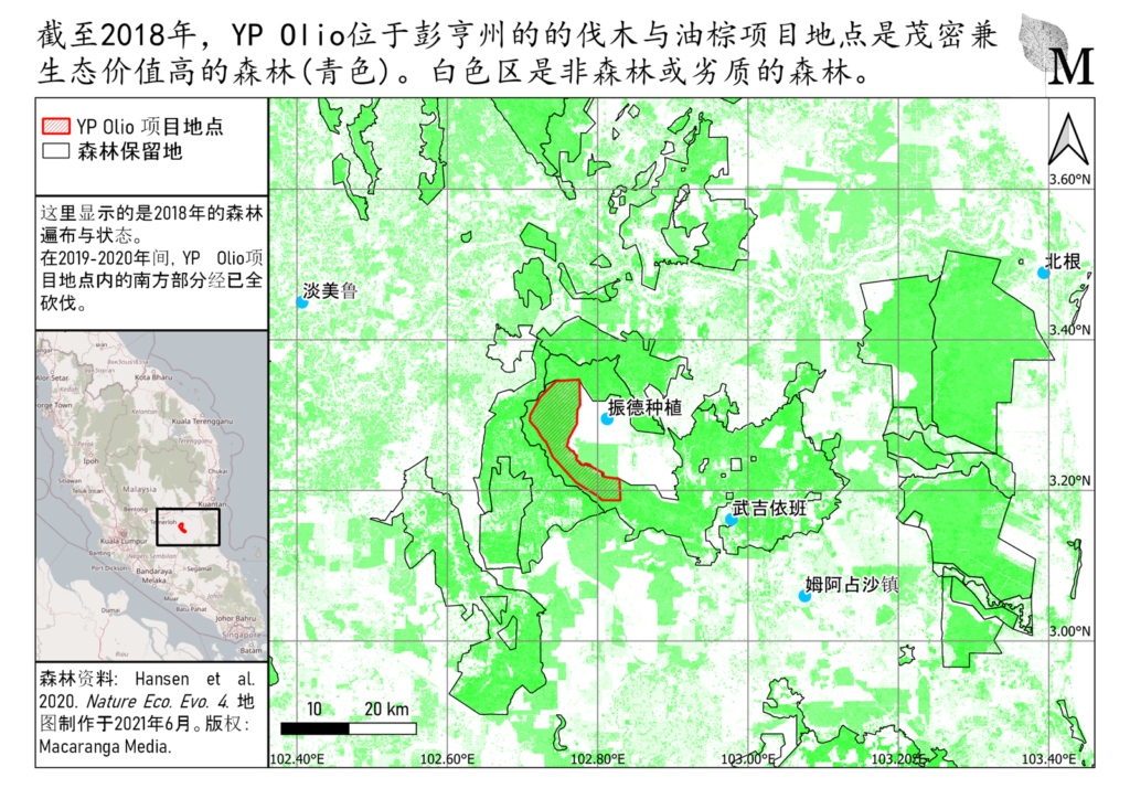 地图显示截至2018年,YP Olio的发展项目地点还是茂密的森林。