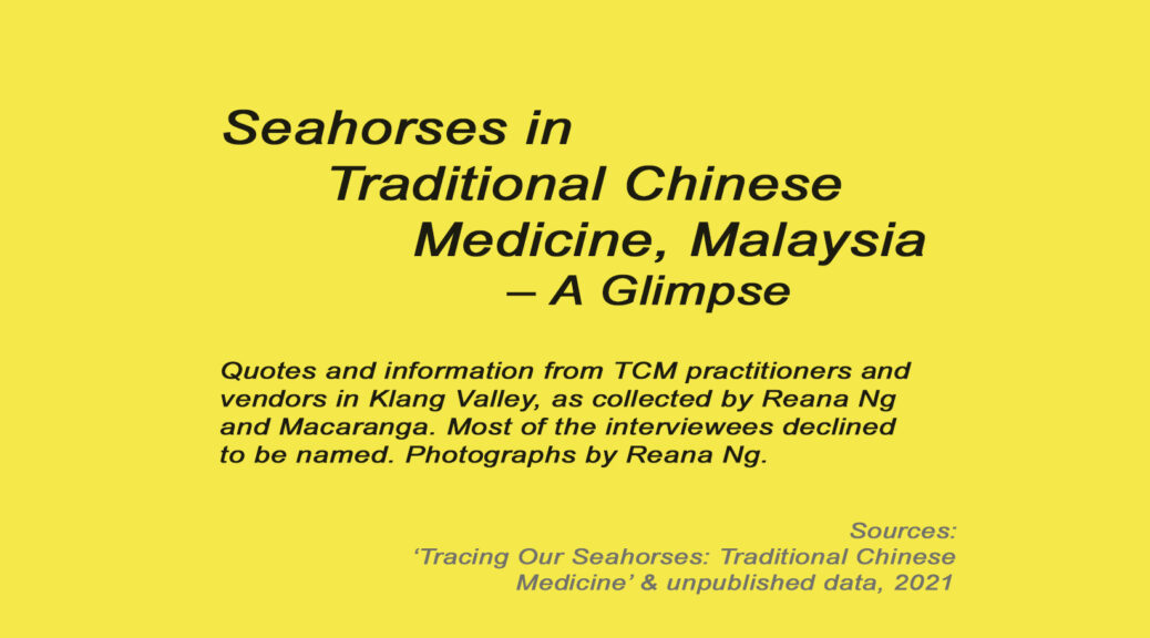 Seahorses in Traditional Chinese Medicine, Malaysia – A Glimpse